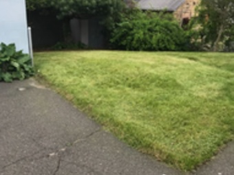 Order Lawn Care in Shelton, CT, 06484