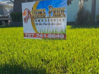 Order Lawn Care in Holiday, FL, 34690