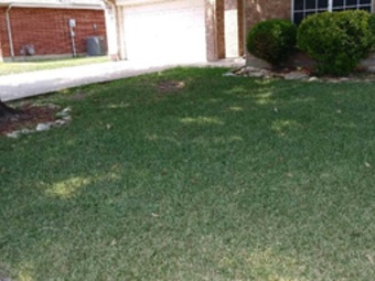 Order Lawn Care in Fort Worth, TX, 76132