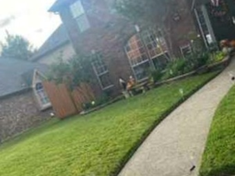 Order Lawn Care in The Colony, TX, 75038