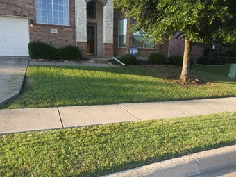 Order Lawn Care in Balch Springs, TX, 75180
