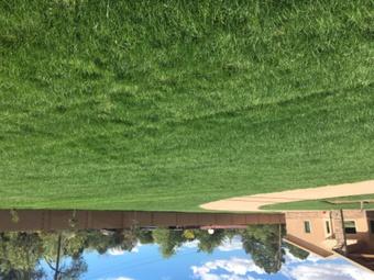 Order Lawn Care in Los Lunas, NM, 87031