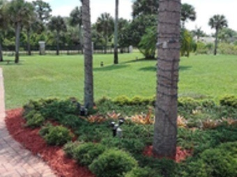 Order Lawn Care in Palm Bay, FL, 32905