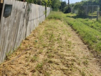 Order Lawn Care in Mission, TX, 78572