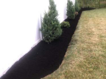 Order Lawn Care in Lancaster, NY, 14086