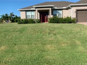 Order Lawn Care in Cape Coral, FL, 33993