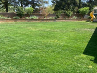 Order Lawn Care in Beaumont, CA, 92223