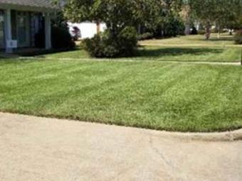 Order Lawn Care in Northport, AL, 35475