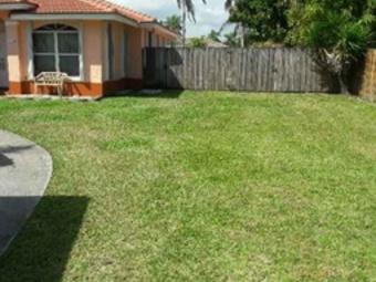 Order Lawn Care in Miami, FL, 33142