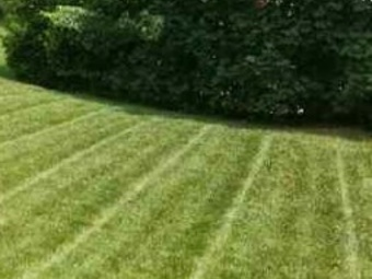 Order Lawn Care in Gouldsboro, PA, 18424