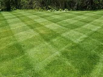 Order Lawn Care in Murfreesboro, TN, 37135