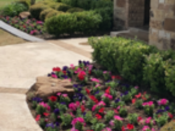 Order Lawn Care in Lubbock, TX, 79423