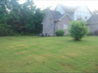 Order Lawn Care in Blountsville, AL, 35031