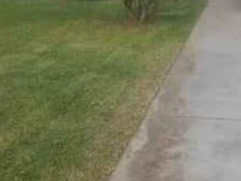 Order Lawn Care in Weslaco, TX, 78599