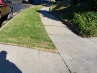 Order Lawn Care in Los Angeles, CA, 90019