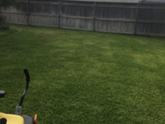 Order Lawn Care in Midland, TX, 79705
