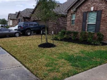 Order Lawn Care in Spring, TX, 77338