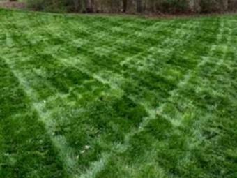Order Lawn Care in Sugar Hill, GA, 30518
