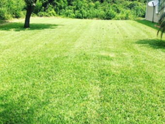 Order Lawn Care in St Augustine, FL, 32086