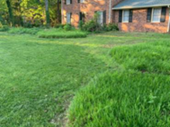 Order Lawn Care in Raleigh, NC, 27610