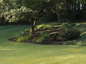 Order Lawn Care in Nashville, NC, 28056
