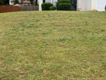 Order Lawn Care in Mc Donough, GA, 30252
