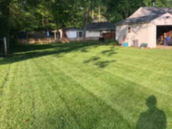 Order Lawn Care in University City, MO, 63390