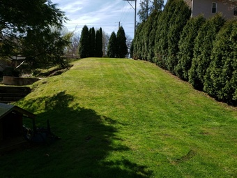 Order Lawn Care in Macungie, PA, 18062