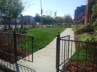 Order Lawn Care in Hyattsville, MD, 20784