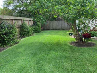 Order Lawn Care in Houston, TX, 77075
