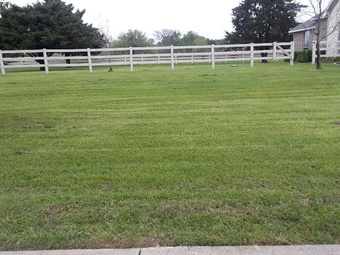 Order Lawn Care in Wylie, TX, 75098