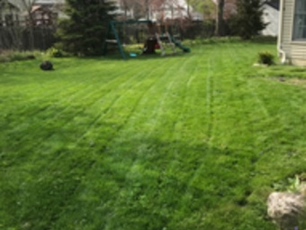 Order Lawn Care in Lakewood, OH, 44012