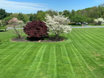 Order Lawn Care in Gaithersburg, MD, 20878