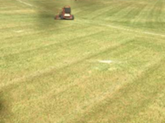 Order Lawn Care in Columbia, SC, 29210