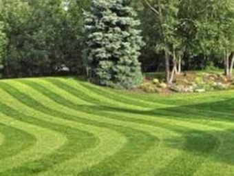 Order Lawn Care in Maple Grove, MN, 55369