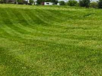 Order Lawn Care in St. Louis, MO, 63129