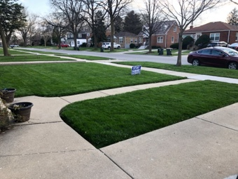 Order Lawn Care in Bellwood, IL, 60104