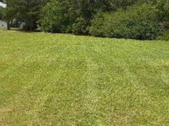 Order Lawn Care in Dothan, AL, 36301