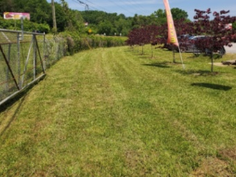 Order Lawn Care in Grover, NC, 28073