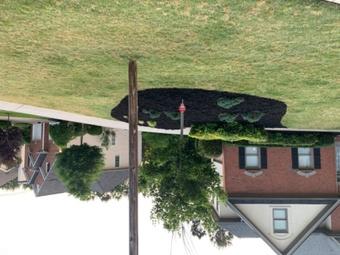 Order Lawn Care in Holly Springs, GA, 30115