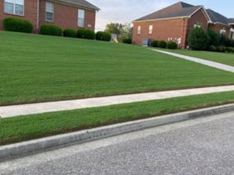 Order Lawn Care in Harvest, AL, 35749