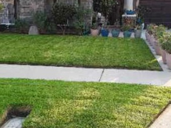 Order Lawn Care in Fountain Valley, CA, 92708