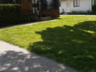 Order Lawn Care in Brown Deer, WI, 53209