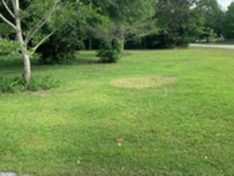 Order Lawn Care in Biloxi, MS, 39532