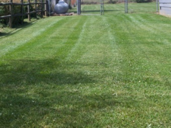 Order Lawn Care in Weaverville, NC, 28787