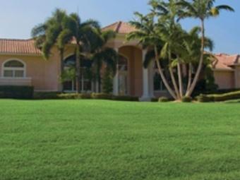 Order Lawn Care in Zephyrhills West, FL, 33541