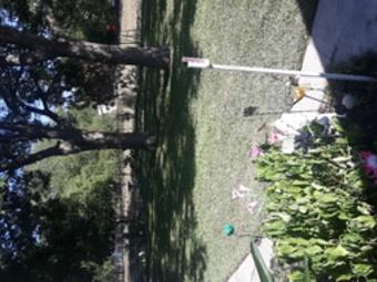 Order Lawn Care in San Antonio, TX, 78223