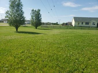 Order Lawn Care in Cedar Rapids, IA, 52405