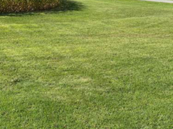 Order Lawn Care in Town Of Vienna, WI, 53529