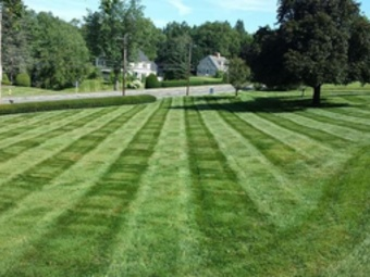 Order Lawn Care in Charlotte, NC, 28213